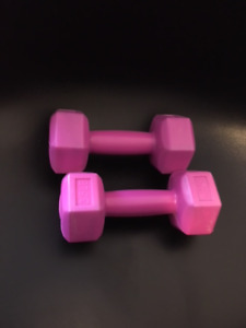 2.5 lb weights
