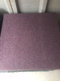 Purple carpet tiles