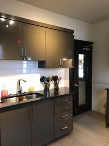 Newly Renovated Furnished South End Room Rentals - ALL INCL.