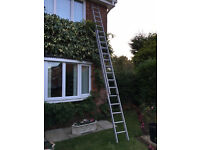 LADDERS (TWO SECTIONS X 4 METRES)