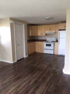 LOVELY TWO BEDROOM BASEMENT APT FOR MATURE COUPLE