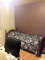● Downtown Hull $400 now or March 1 ●