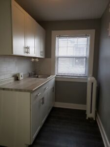 BEAUTIFULLY RENOVATED 1 BDRM - WALKERVILLE