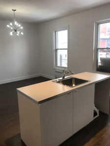 4 1/2 for Rent in Verdun near Wellington - Fully renovated