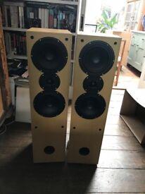 Aural Envelope EX300 Floor Speakers