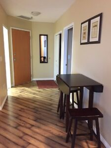 Beautiful downtown apartment for rent starting Dec. 1 Regina Regina Area image 10