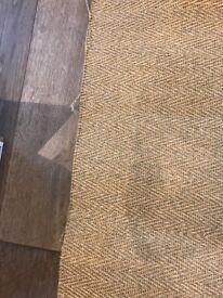 Beautiful brand new Sisal carpet