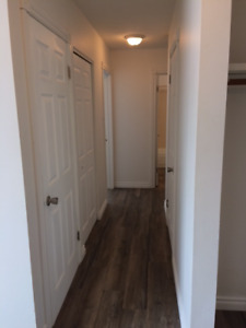 Large 1 BDRM & Den in Old Strathcona! Renovated !!!