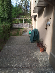 2 Bedroom above ground basement for rent