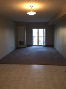 SPACIOUS SUITES IN WATERLOO! READY NOW! Kitchener / Waterloo Kitchener Area image 8