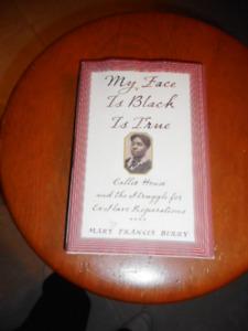 Novel - My Face is Black is true