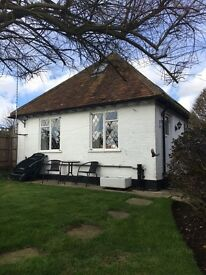ANNEXE TO RENT, JACOBS WELL, GUILDFORD
