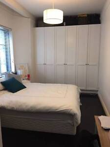 Large King bedroom available to rent Edgecliff Eastern Suburbs Preview