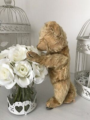 """Antique Chiltern Old Teddy Bear """"Norris"""" - 1930s"""