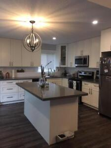 1 Bedroom w. Office , newly renovated!