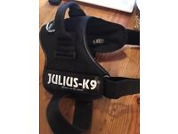Dog Harness Julius K9