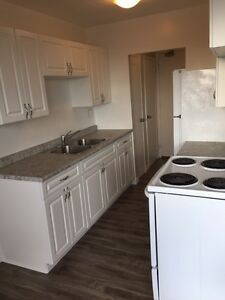 Recently renovated apt in great location! Pets welcome!