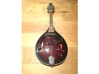 Stag Electro Acoustic Mandolin w/case and Strings