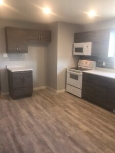 Beautiful 3 bedroom, Newly renovated upper suite