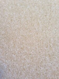 "Neutral colour (off-white) low pile carpet (5'-11"" W x 6'-0"" L)"