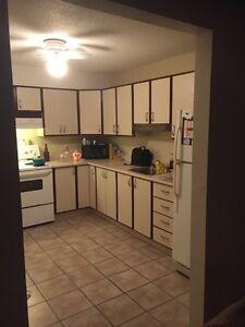 Bel appartement à louer dans le secteur Hautes-Plaines (Hull) Gatineau Ottawa / Gatineau Area image 9
