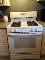 Gas Oven Stove