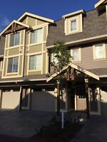 "$125 /3br - ""Fine Furnished Super Suites In Centrefield"" (CENA)"