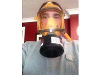 Dust / fumes mask