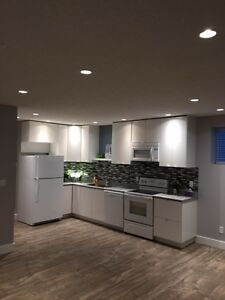 Bright Modern Basement Suite for Rent.  Avail. Feb 1st.