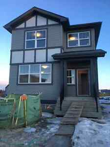 BRAND NEW BASEMENT SUITE FOR RENT IN SPRUCE GROVE