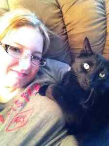 Pet sitter for Windsor and Essex County Windsor Region Ontario image 4