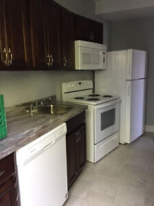 RENOVATED 2 BR APT CLOSE TO DAL, KINGS COLLEGE & DOWNTOWN