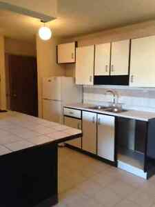 One Bedroom Apartment - Starting at $700