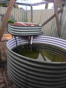 Aquaponics System complete  Suburban Farmer setup Kardinya Melville Area Preview