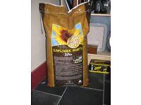 Bird food/ Sunflower seed