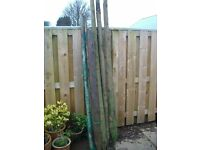 Fence posts/ stakes. Assortment of stakes/ posts, ideal for vegetable plots ( runner beans) etc