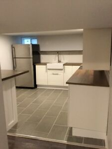 2 Bedroom Beautifully Renovated South Walkerville Apt