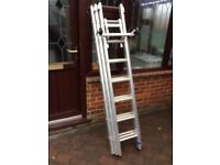 Triple extension Ali Ladder