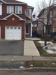 One Bedroom Basement Apartment (Bovaird & Hurontario)
