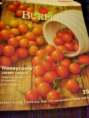 BURPEE SEED CATALOG MAGAZINE 2019 HONEYCOMB CHERRY TOMATOES COVER