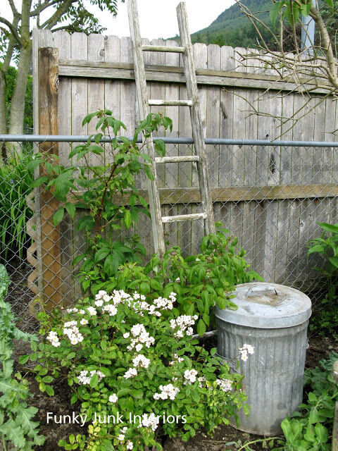 5. Old ladder trellis and garbage can planter / 10 garden junk art ideas to jazz up your yard! By Funky Junk Interiors for ebay.com