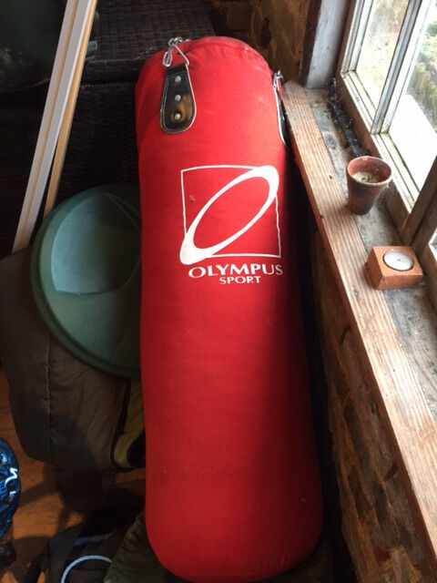Olympus Sport Boxing Punch Bag In Guildford Surrey