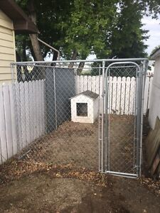 Chain Link Dog Kennel and House