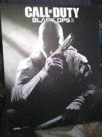 Call of Duty Black Ops II picture on wood