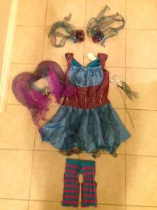 Fairy Princess costume