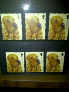 Stamps - Cocker Spaniel