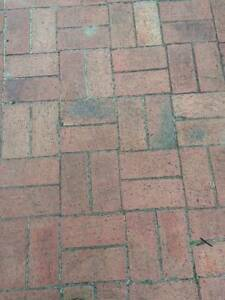 Pavers - terracotta coloured North Bondi Eastern Suburbs Preview