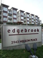 $90 /2br -1000ft2 Two Bed Two Full Bath Suite in Edgebrook (EDD)