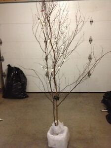 Decorative trees for sale