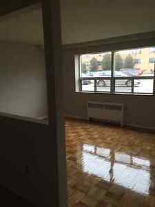 Renovated 2 Bd apartment from May 15 - June 1.
